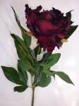 Пион красивый темно-бордовый 75 см