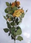 """Роза """"Эмили"""" золотая/желтая"""