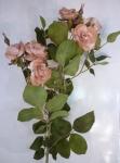 """Роза """"Эмили"""" 65 см"""